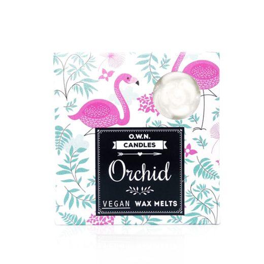 voski-orhideja
