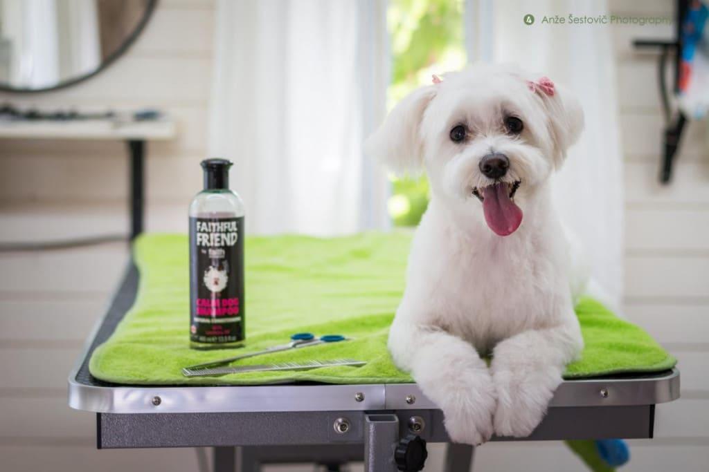 Fatih in Nature naravni šampon za psa