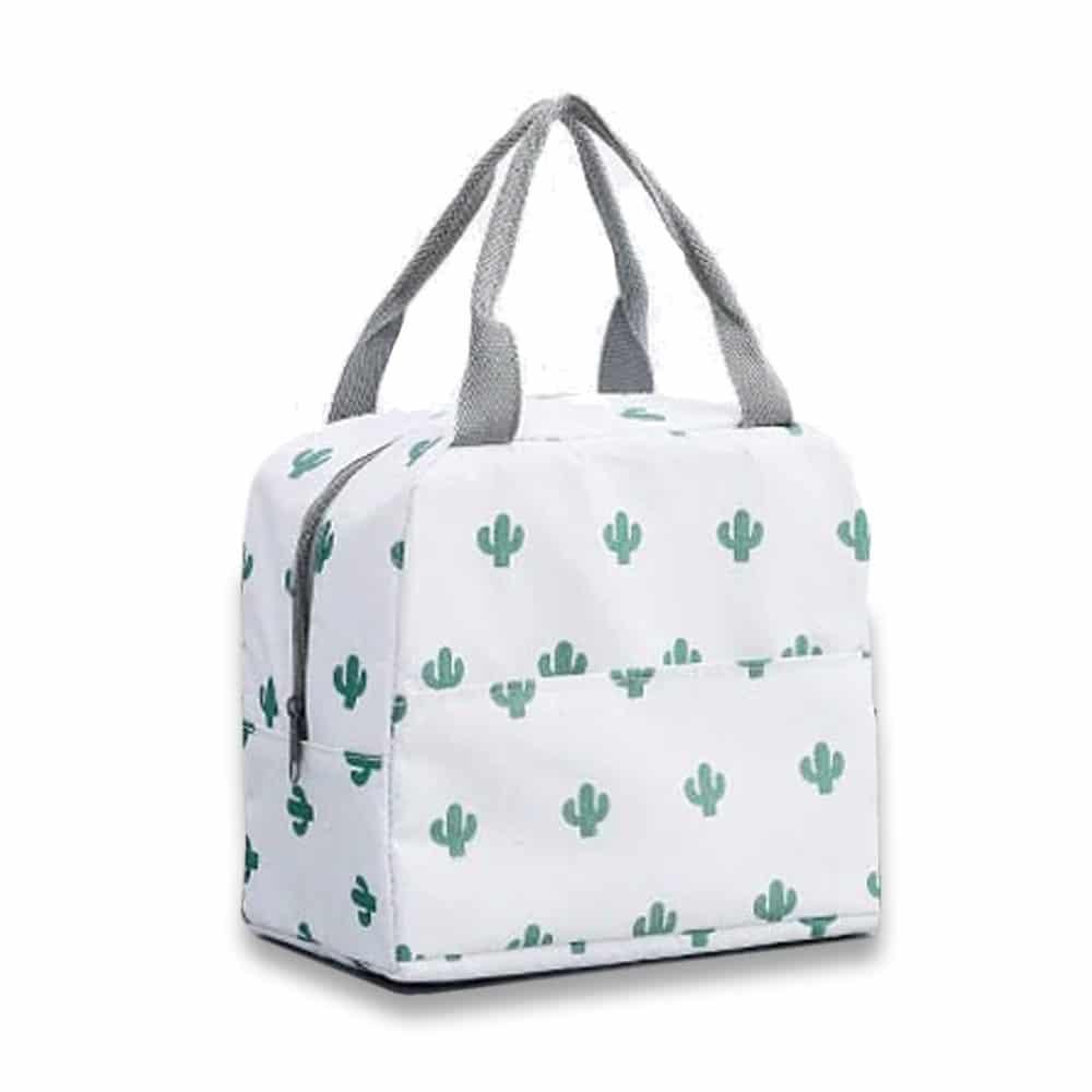 hladilna torbica kaktusi